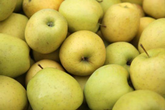 Pomme Belchard - Potager