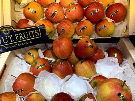 Pomme Rubinette