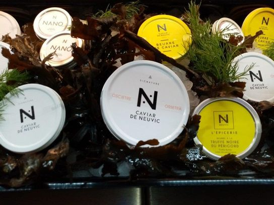 Caviar Baeri Nano 10 g (A)