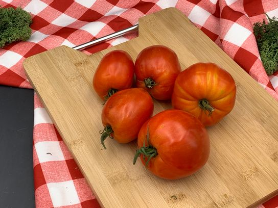 Tomate allongée cœur avignon